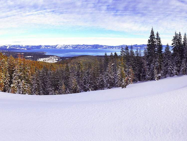 alpine-meadows