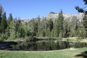 Swimming-Pond