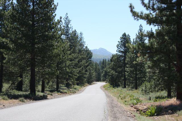 Juniper-creek-juniper-hills