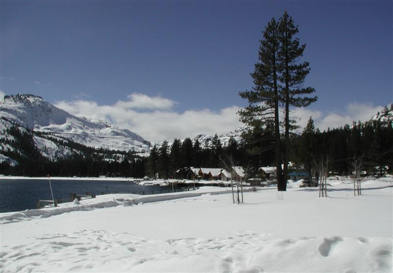 donner-lake-beach