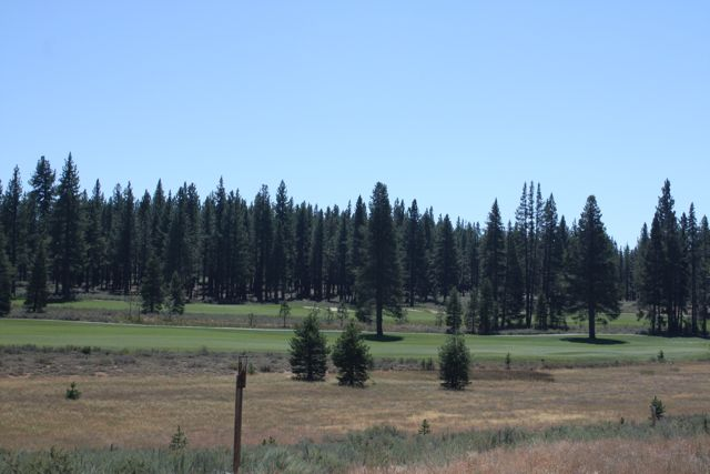 Grays-golf