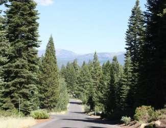 Martiswoods Estates / Ponderosa Ranchos