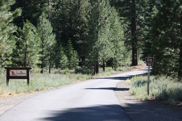 Forest-Service-Road