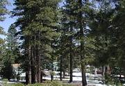 Sierra Meadows Open Space