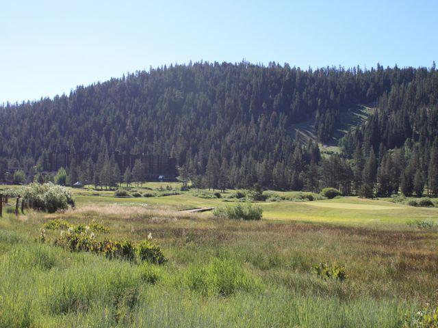 Squaw Meadow