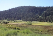 Squaw Meadow