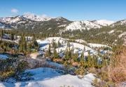 Tahoe Donner Area